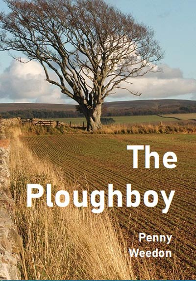 The Ploughboy